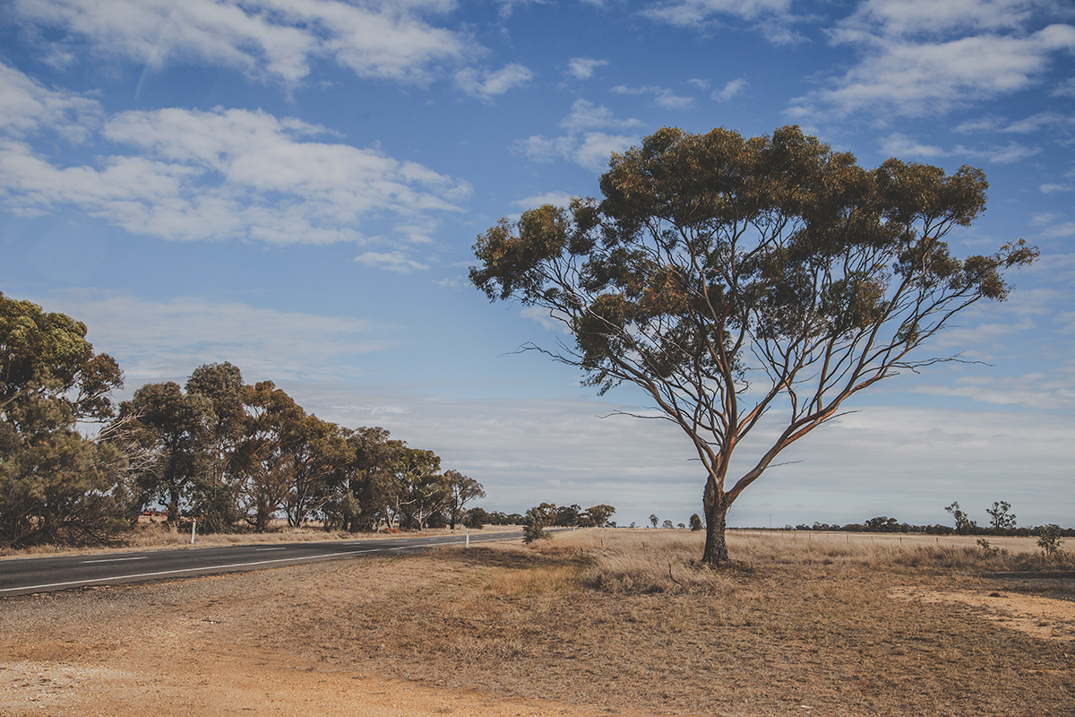 This is Minyip in Victoria, Australia. Also known as Coopers Crossing from the tv-series The Flying Doctors!