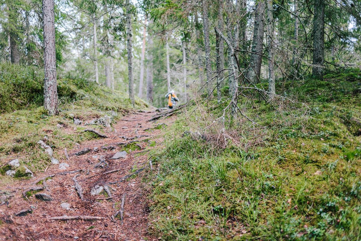 tyresta-nationalpark-stockholm-67