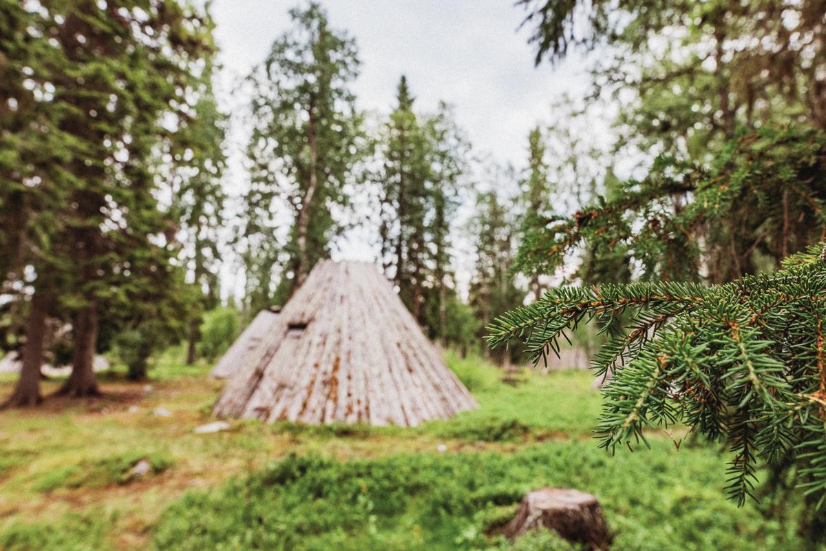 Ankarede Vildmarksvägen Jämtland