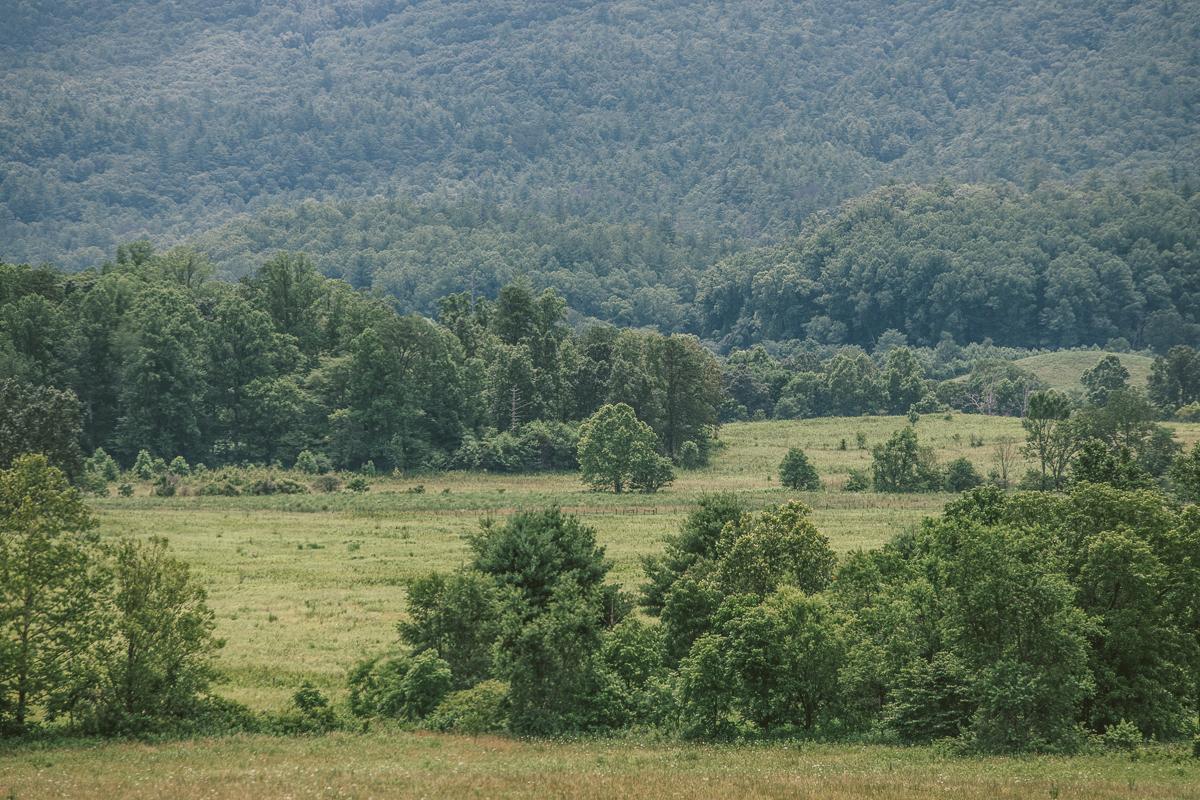 Great Smoky Mountains National Park | UNESCO världsarv