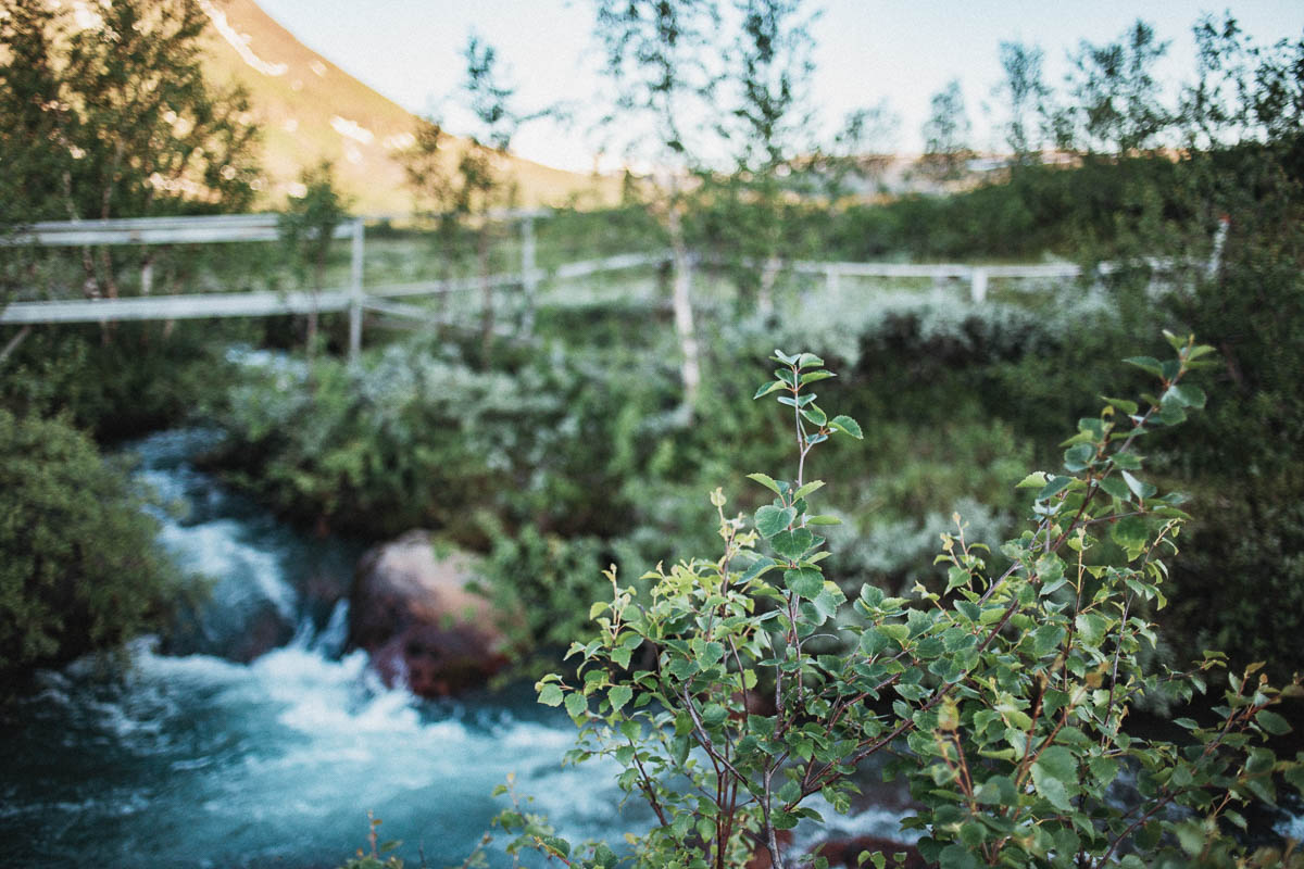 Stora Sjöfallet nationalpark